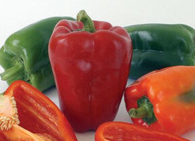 Pepper (mild) - Ace Bell Pepper