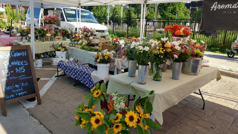 Aromatic Acres' summer display at the TOSA Farmers Market
