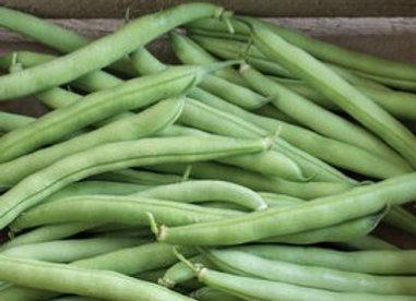 Green Bean - 4-pack