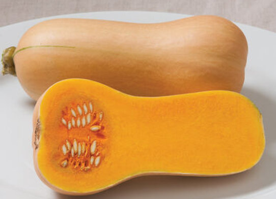 Squash (winter) - Butterscotch