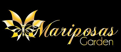 Mariposas_Main_Logo_horizontal_gold-01.j