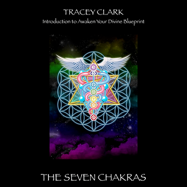 Introduction to Awaken Your Divine Blueprint E-book by Tracey Clark (Goddess Mar