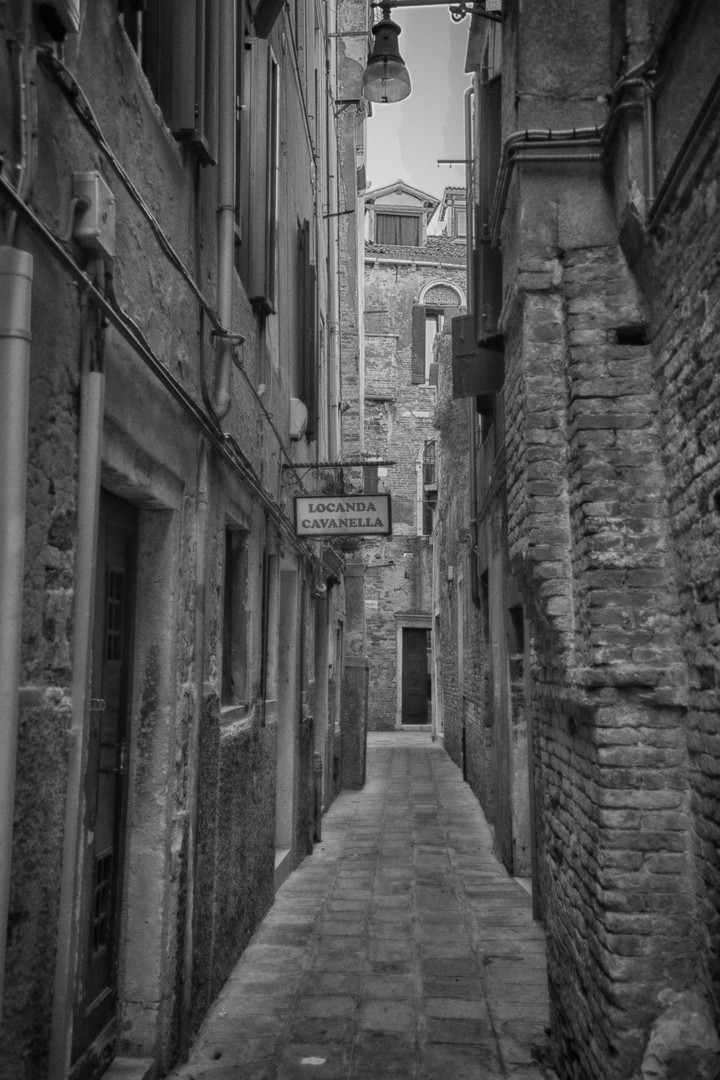 Venice Alley - A.jpg