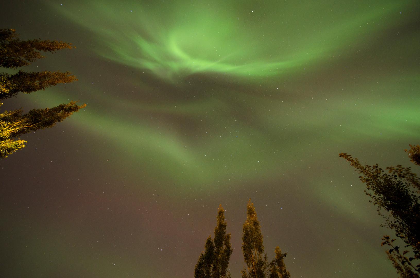 Aurora - 001.jpg