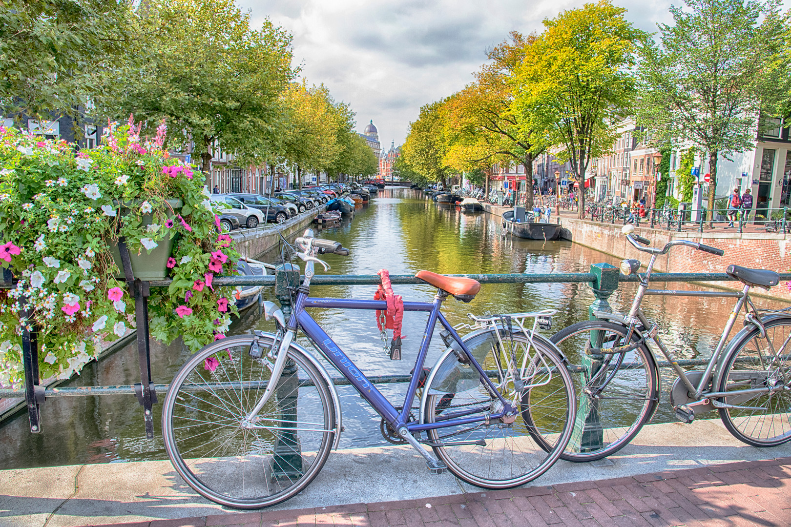Amsterdam Bikes - A.jpg