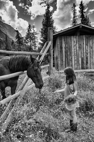 Sarah and Horse - 001.jpg