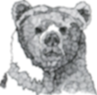 Click the Bear for music!