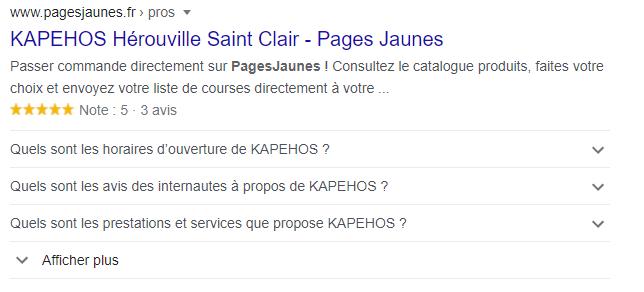 Exemple d'un résultat google créé par les pages jaunes