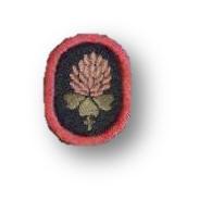 Clover (flower)