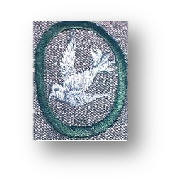 Bluebird on Grey-Green