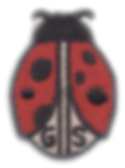 img445.jpg