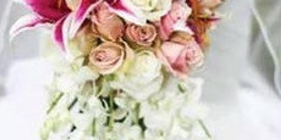 Washington Wedding Experience Bridal Show