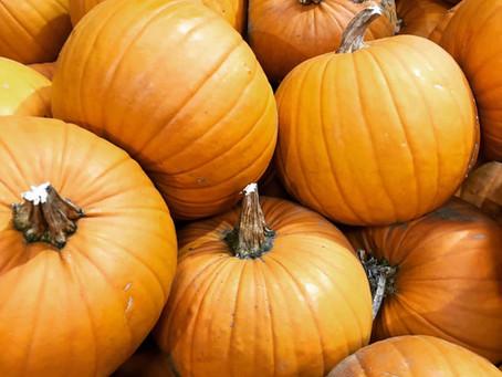 October - Move Over Berries, Hello Pumpkins!