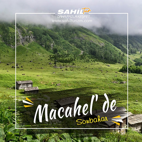 MACAHEL'DE SONBAHAR