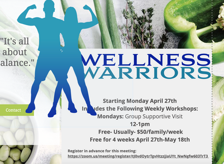 Wellness Warriors Week 3 Webinar