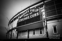chicago-cubs-wrigley-field-sign-in-black
