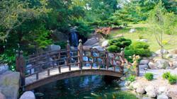 Arboretum-Hero-WPVL-1600x900