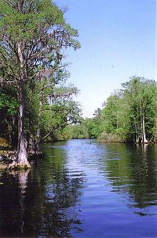 lumbee river.jpg