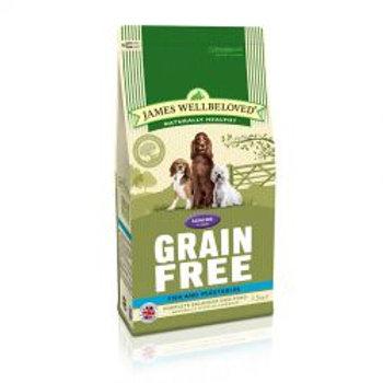 James Wellbeloved Dog Senior Grain Free Fish & Vegetables