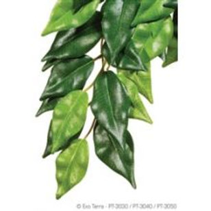 Exo Terra Silk Fiscus Plant