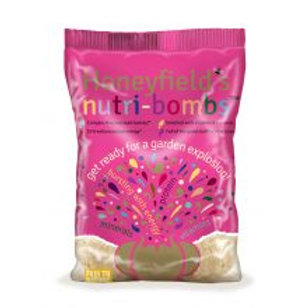 Honey Fields Nutri Bombs