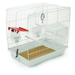 Pennine Bird Starter Kit
