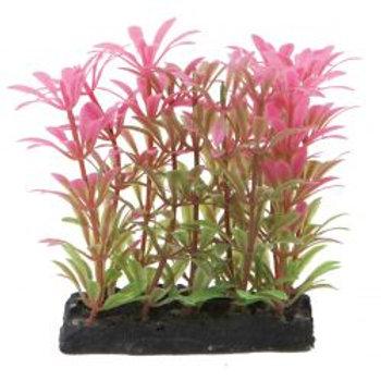Fish 'R' Fun Aquarium Plant Pink