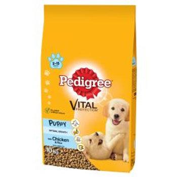 Pedigree Complete Puppy Medium Chicken & Rice