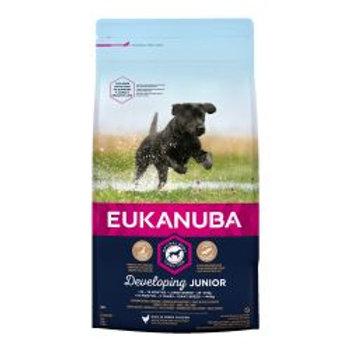 EUKANUBA Developing Junior Large Breed Rich In Fresh Chicken