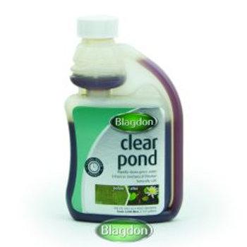 Blagdon Clear Pond