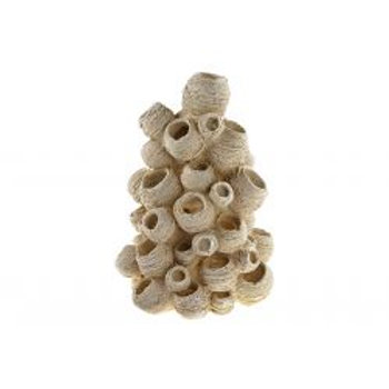 Classic Coral Nest Stack
