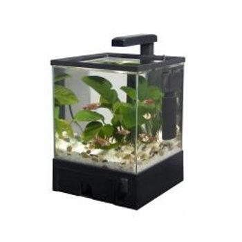 Fish 'R' Fun Aqua Box Aquarium Black