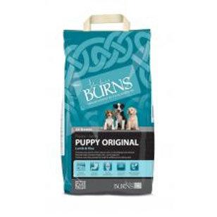 Burns Puppy Lamb