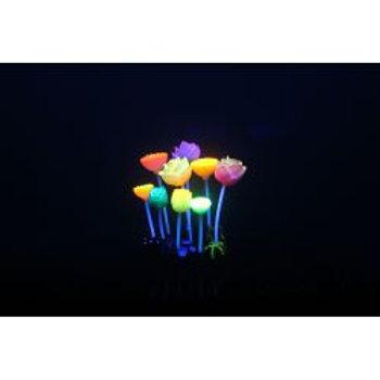 Aquarium Lumo Lotus Flower