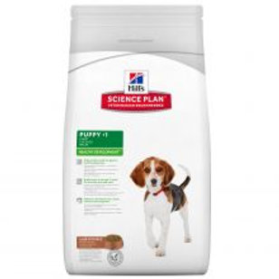 Hills Science Plan Puppy Healthy Development Medium with Lamb & Rice