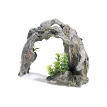Classic Driftwood Arch
