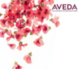Aveda products.jpg