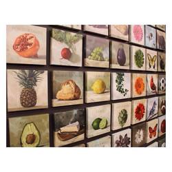 Darren Gygi Collection