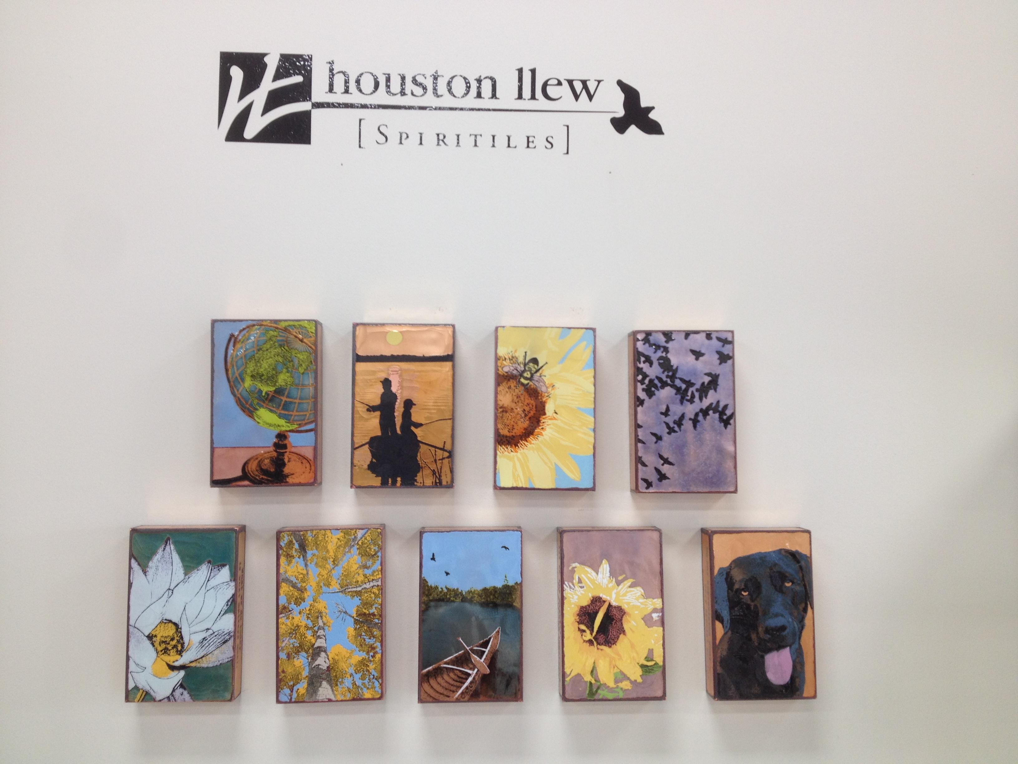 Houston IIew