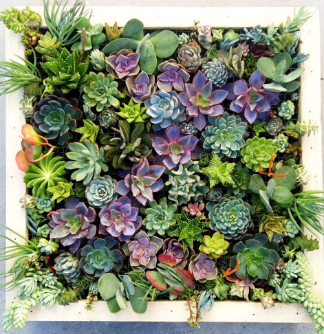 Custom Floral