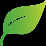 leaf2_400x400.png