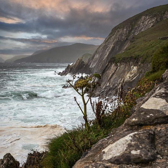 """Coastal View"""