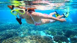 Exploring the Reef in Belize