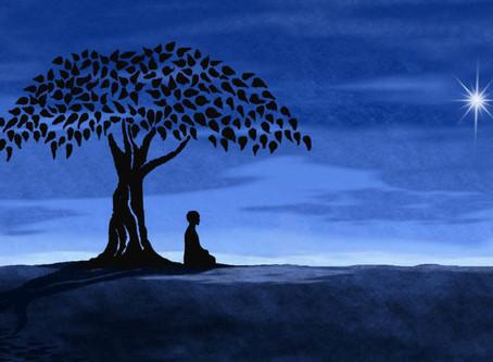 El árbol que cumple los deseos