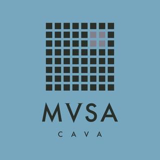 MVSA_logo_site.jpg