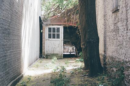 De wortels van uw bomen veroorzaken schade bij buren...