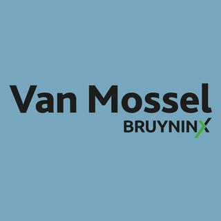 Bruyninx_logo_site.jpg