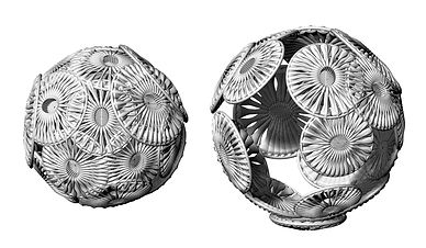 190426_Rendered Coccoliths.jpg