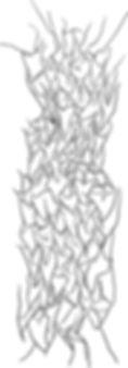 181022_Front.jpg