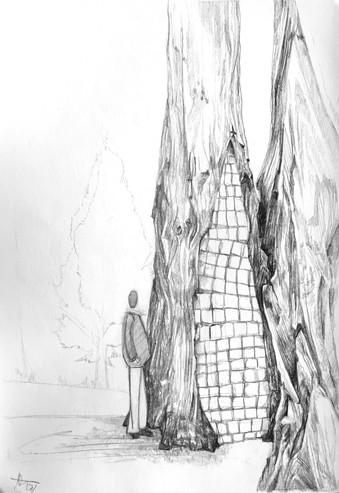 Cinder Tree